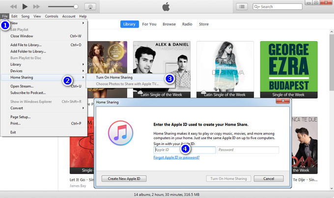 turn on home sharing on itunes